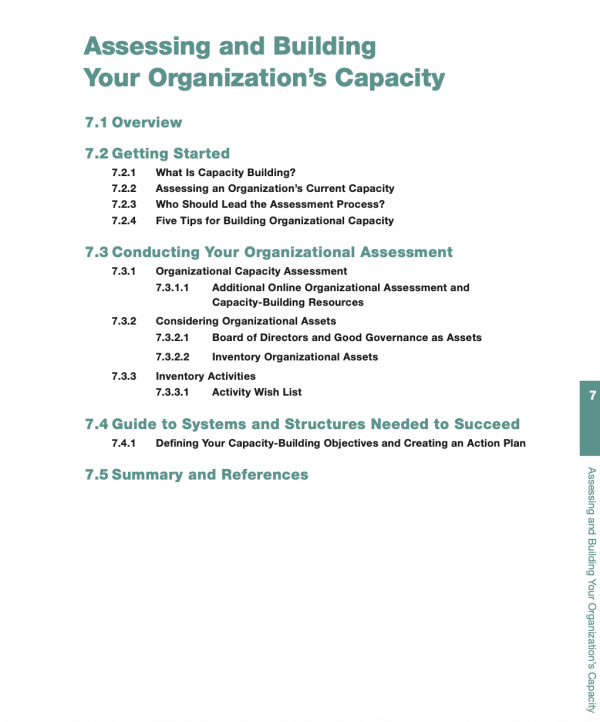 Essential NGO Guide - Chapter 7 - Assessing and Building Your Organization's Capacity